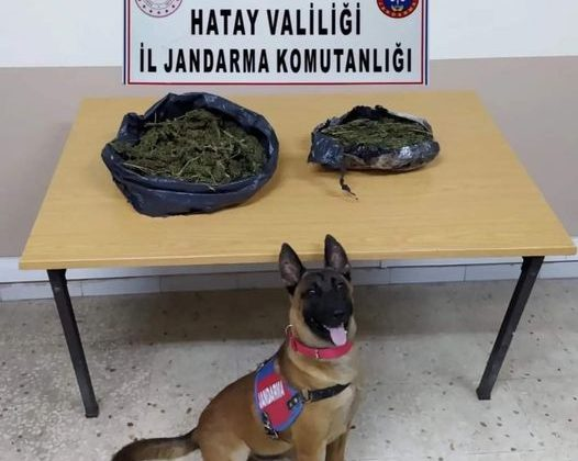 Uyuşturucu Operasyonunda 4 Gözaltı